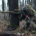 Gruwelijke dood voor wilde zwijnen deze winter